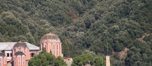 This monastery is set against a backdrop of a hill including Holm and Hungarian Oak forests. Those forests are not only ecologically important, but also foresee in much needed building materials and economic income for the monastic communities on Mt. Athos