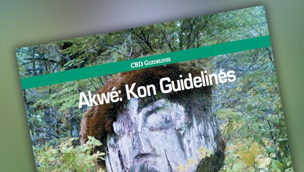 Akwé: Kon Guidelines