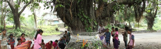 Vata Puja in progress. The Ficus tree is believed to be the king of all trees, for its endurance and longevity.
