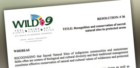 previously at WILD9 this resolution on Sacred NAtural Sites in Protected Areas was adopted in 2009 (see the library). This year two additional resolutions were proposed to WILD 10.